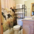 Cottonwood bathroom