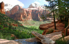 zion-canyon-vacation